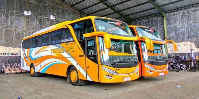 Bus Jakarta Semarang Executive Royal Tunggal Dara Juli 2019