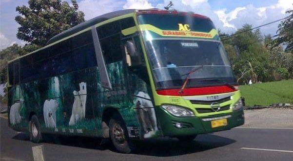 Bus Jakarta Semarang Bisnis Cepat Sari Indah 2019
