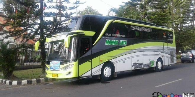 Bus Jakarta Semarang Executive Mawar Jaya Juli 2019